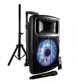 CASSA AUDIO AMPLIFICATO HPS B12S 700 WATT USB