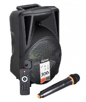 CASSA AUDIO AMPLIFICATO HPS B8 300 WATT CON RADIOMICROFONO
